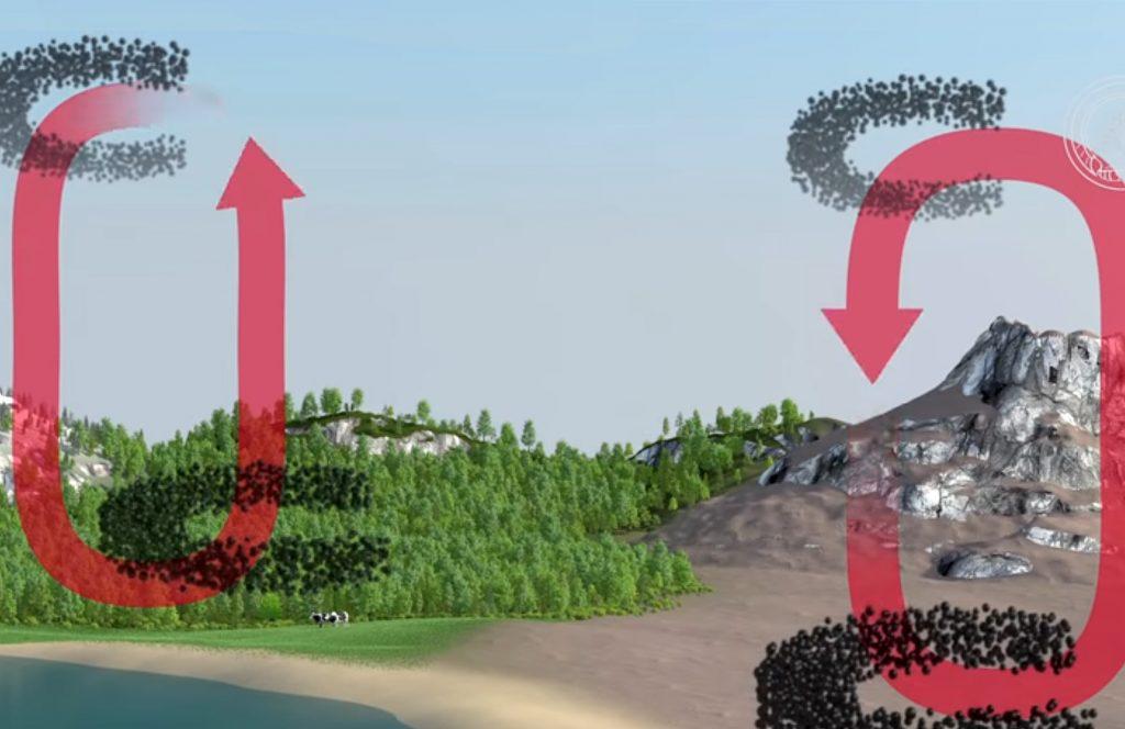 Kohlenstoffdioxyd-Kreislauf
